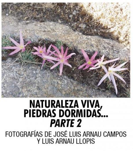 """""""Naturaleza viva, piedras dormidas"""". Fotografías de José Luis Arnau Campos y Luis Arnau Llopis"""