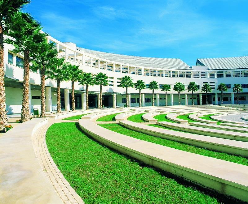 Alicante universidad for Piscina universidad alicante
